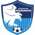Büyükşehir Belediyesi Erzurumspor